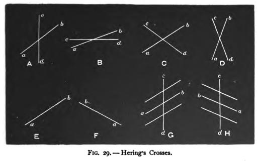 Psychological Optical Illusion Titchener's Manuals